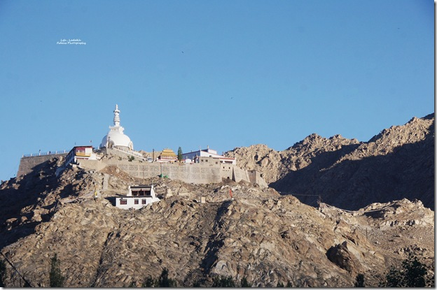 Ladakh57