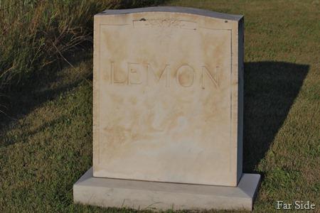 lemon Headstone (2)