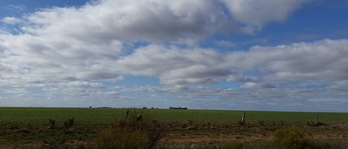 virtù - the south australian landscape
