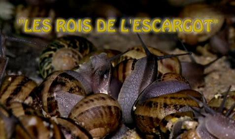 Apetyt na ¶limaka / Les rois de l'escargot (2010) PL.TVRip.XviD / Lektor PL