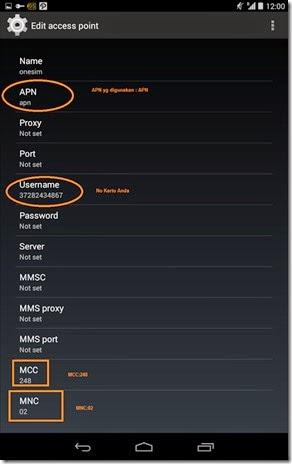 APN data roaming