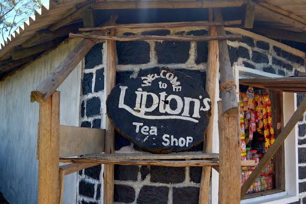 липтонс сит, чайный магазин