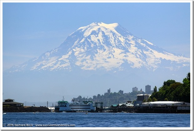 150704_Tacoma MtRainier_0032