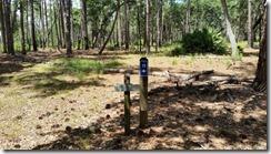 Lake Loop marker