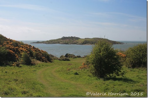 14-Ardwall-Island