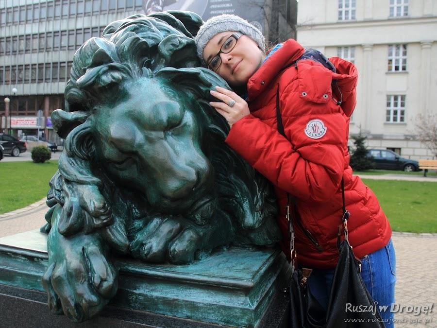 Gliwicki śpiący lew - sama słodycz!