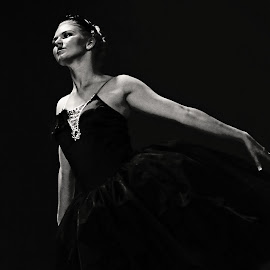Black Swan by Sherie Lynn - People Musicians & Entertainers ( black swan, black and white, perform, swan lake, ballet, people, dance, entertainer, dancer )