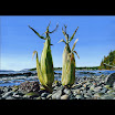 Art - __78-3887-63201222-the_great_pacific_corn_patch.jpg