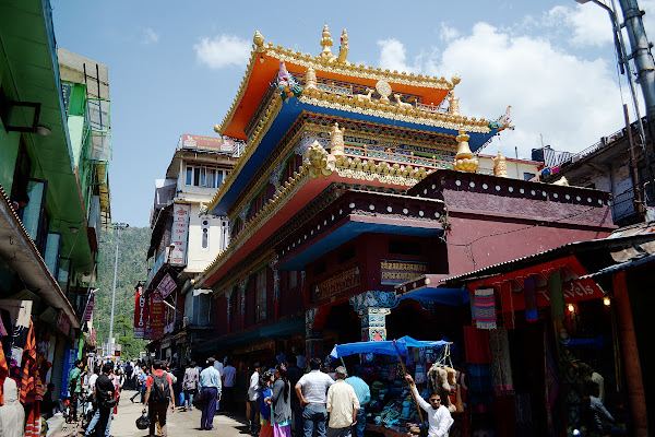 маклеод ганж центральная улица буддистский храм