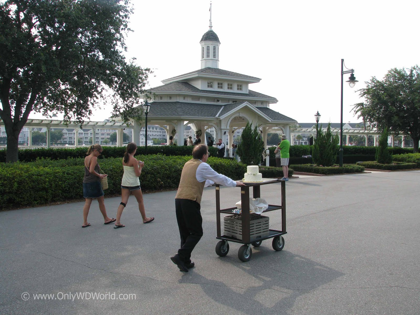 disney world wedding blog