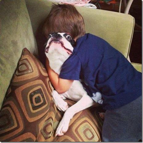 dog-love-friend-020