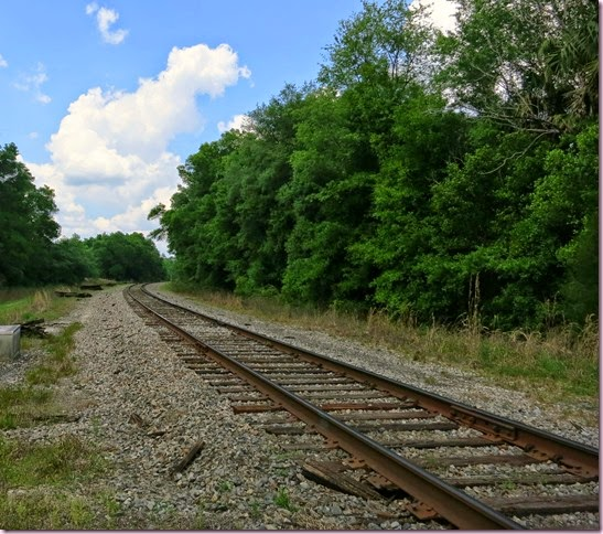 tracksIMG_3890