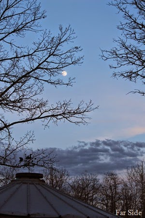 Grain Bin and Moon