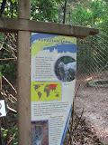 The Eurasian Lynx sign at the Nashville Zoo 09032011