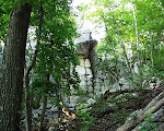 Stone formation, Sugarloaf Mountain, Barnesville, Maryalnd.