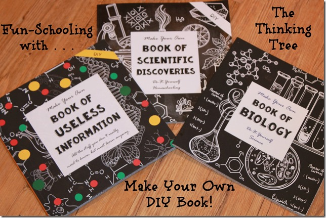 DIY Books = Fun Schooling