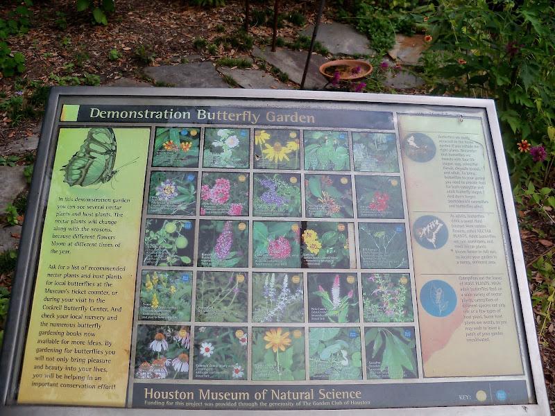Houston Museum of Natural Science - 116_2836.JPG