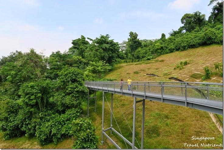 新加坡花柏山 (79)
