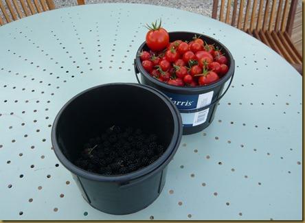 paint pots3