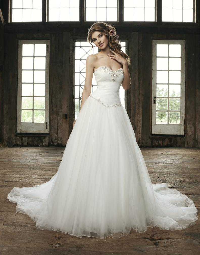 Tulle Ball Gown cinderella