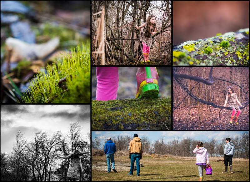 Collage week 14