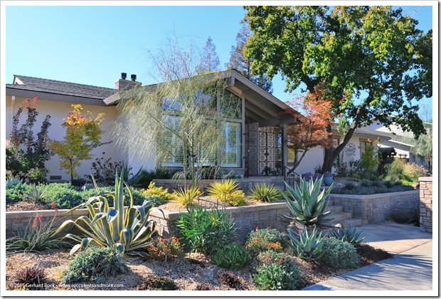 151112_WalnutCreek_house_053