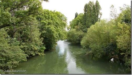 Río Arga a su paso por el parque Arantzadi - Pamplona