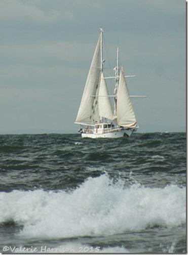 14-yacht