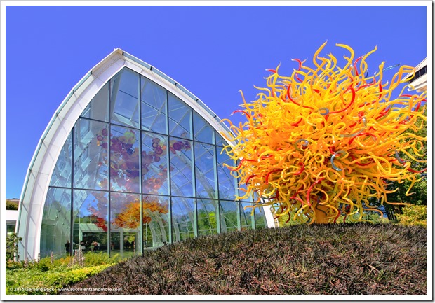 150626_Seattle_ChihulyGardenGlass_0050