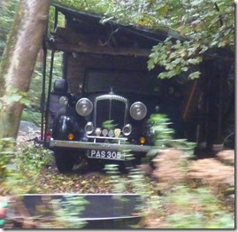 1 cars in woods