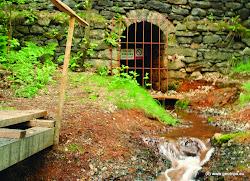 V 16. století se objevují první zmínky o nálezech hnědého uhlí, které se však ve větší míře začalo těžit až kolempoloviny 18. století. Počátkem 18. století také proběhla výstavba místního kostelaNejsvětější Trojice, přestavěného v 19. století. Devatenácté století znamenalo předevšímrozšíření zdejšího minerálního závodu na výrobu kyseliny sírové, stavbu silnice KarlovyVary - Cheb a zakládání dalších hnědouhelných dolů v této oblasti. Nejznámějším dolem byl Michal, který ukončil svojičinnost v roce 1988. Dnes je na tomto místě příjemné koupaliště stejného jména. Dnes je Staré Sedlo obcí snažící seo svůj rozvoj a investující do infrastruktury a služeb obyvatelům.