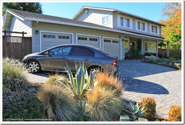 151112_WalnutCreek_house_038
