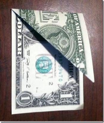 rosa moneygami