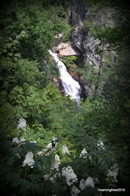 Tempesta Falls with fragrant flowers in the foreground