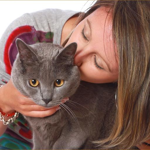 Ma photo - Comment empecher un chat d uriner a un endroit ...