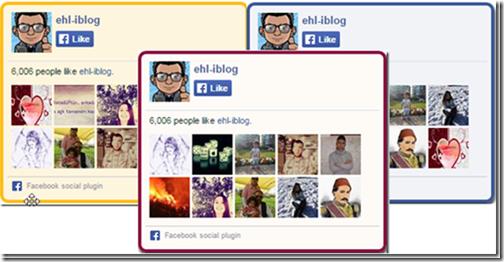 facebook-begen-kutusu