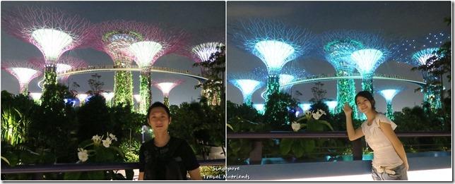 新加坡超級樹燈光秀 (49)