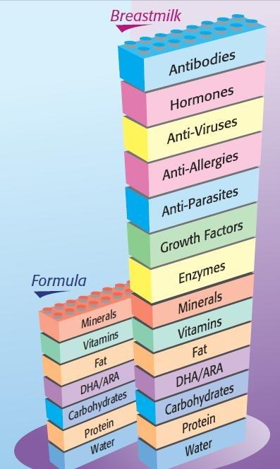 Perbandingan khasiat susu ibu dan susu formula