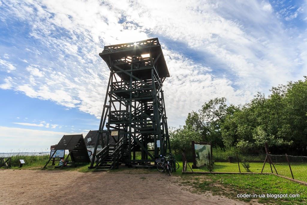 словинский парк. польша