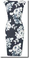 Phase Eight Rose Print Dress