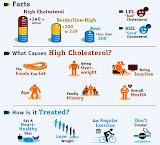 Cholesterol - Understanding Cholesterol