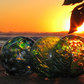 Glass Float Sunset by Vonelle Swanson - Public Holidays Christmas ( glass floats, pwcholidays, pointsettia, sunset, pacific ocean, oregon coast, glass decor, circle, pwc79 )