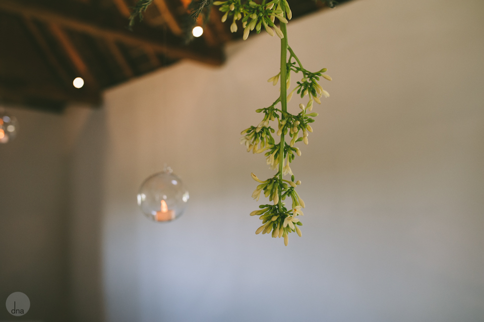 Paige and Ty wedding Babylonstoren South Africa shot by dna photographers 29.jpg