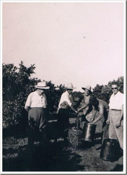 1952 en el huerto de naranjos