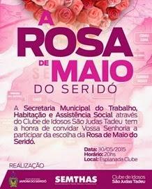 Banner Rosa de Maio