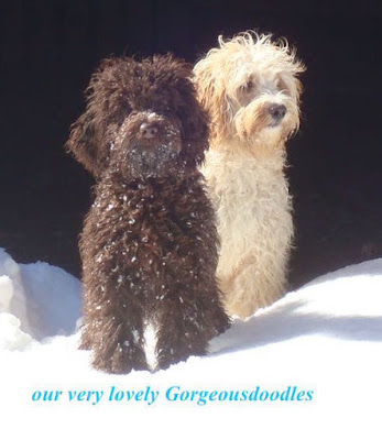 Gorgeousdoodles Ladies our lovely Shellybee and Morgan.