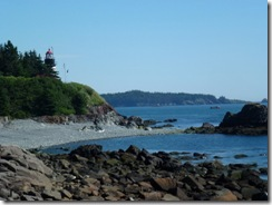 Maine's rocky coast at Quoddy Head SP