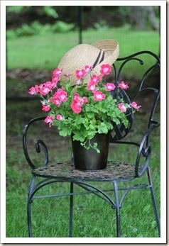 courtyard.chair and flowers 057