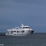 Nosso barco - Majestic