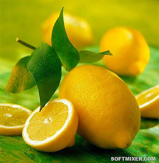 94260950_58044394_limon3